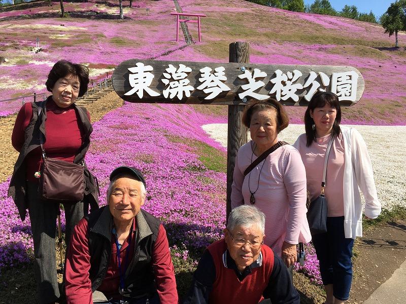 北海道観光タクシー芝桜