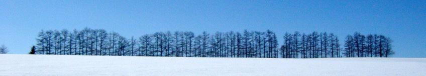 流氷・冬の摩周湖・SL湿原号・旭山動物園 観光タクシー